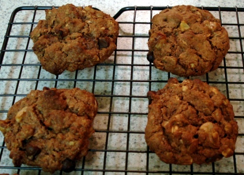 fresh from oven cookies