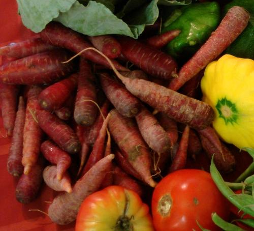 maroon carrots