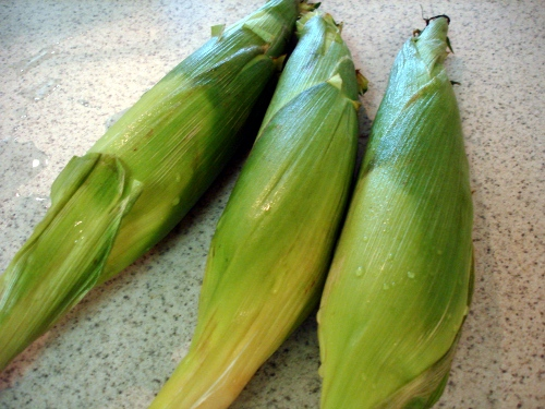 corn on the cob - trimmed and rinsed